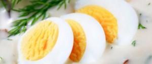 egg-allergen